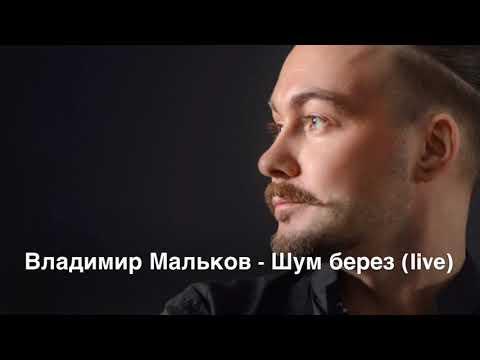 Владимир Мальков - Шум берез ( муз. К. Орбелян, сл., В. Лазарев) - LIVE версия
