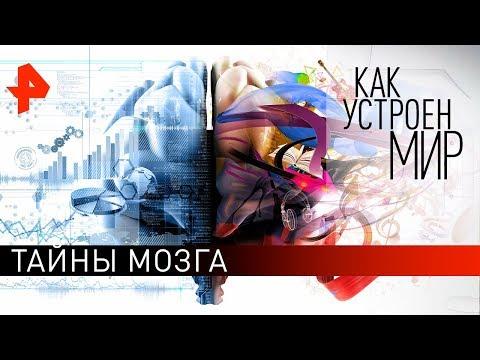 """Тайны мозга. """"Как устроен мир"""" с Тимофеем Баженовым (31.05.19)."""