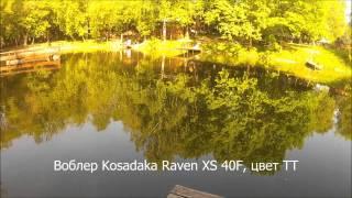 Кислотные часы рыбалки с воблерами Kosadaka в расцветке TT