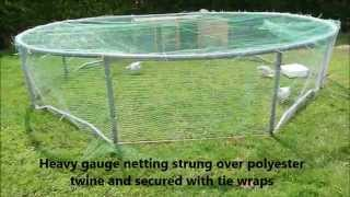 Trampoline Based Chicken Run