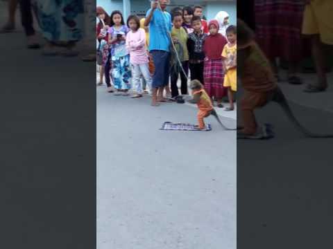 Topeng monyet di gorontalo