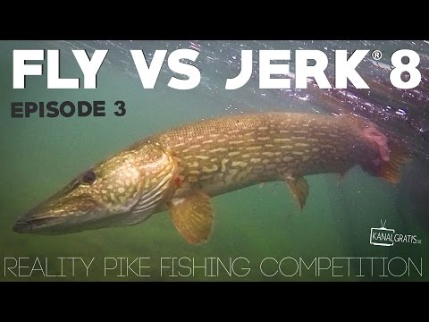 Fly vs Jerk 8 - EPISODE 3 - Kanalgratis.se (with German, French & Dutch subtitles)