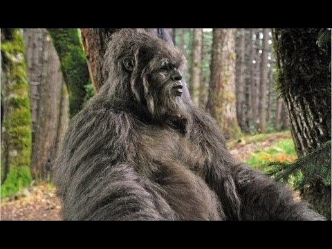 Bigfoot/Yeti/Sasquatch found & Caught on Tape!