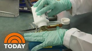 Breast Cancer Breakthroughs: Inside The Latest Treatments | TODAY