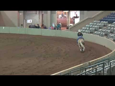 TNRHA 100519 Youth Kennedy Stephens On Cromed Rooster