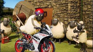 [Shaun the sheep] Умный овечий мультфильм - Эпизод 7 - новый телевизор