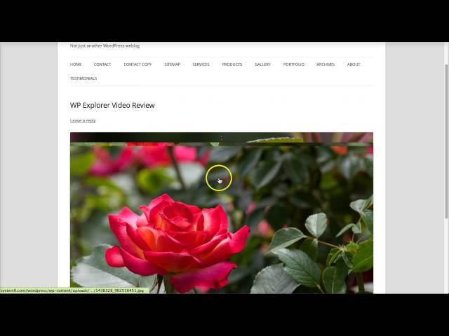Envira Gallery - WordPress Gallery Plugin