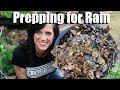 How to Prepare a Garden for LOTS of Rain