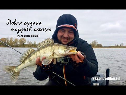 рыбалка спиннингом осенью судак видео