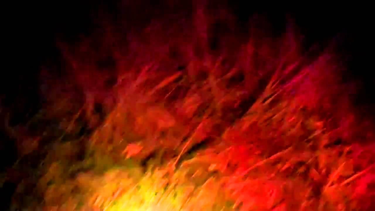 deer blood tracking light