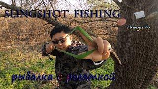 Рогатка как метод ловли Сазана Slingshot Fishing