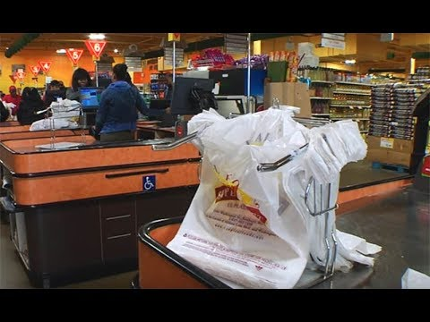 Plastic Bag Ban?