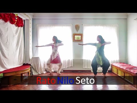 Shape of You | Bharatnatyam Duo | Nepal | RatoNiloSeto