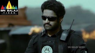 Shakti Movie Jr.NTR Non Stop Action Scene | Jr.NTR, Ileana, Sonu Sood | Sri Balaji Video