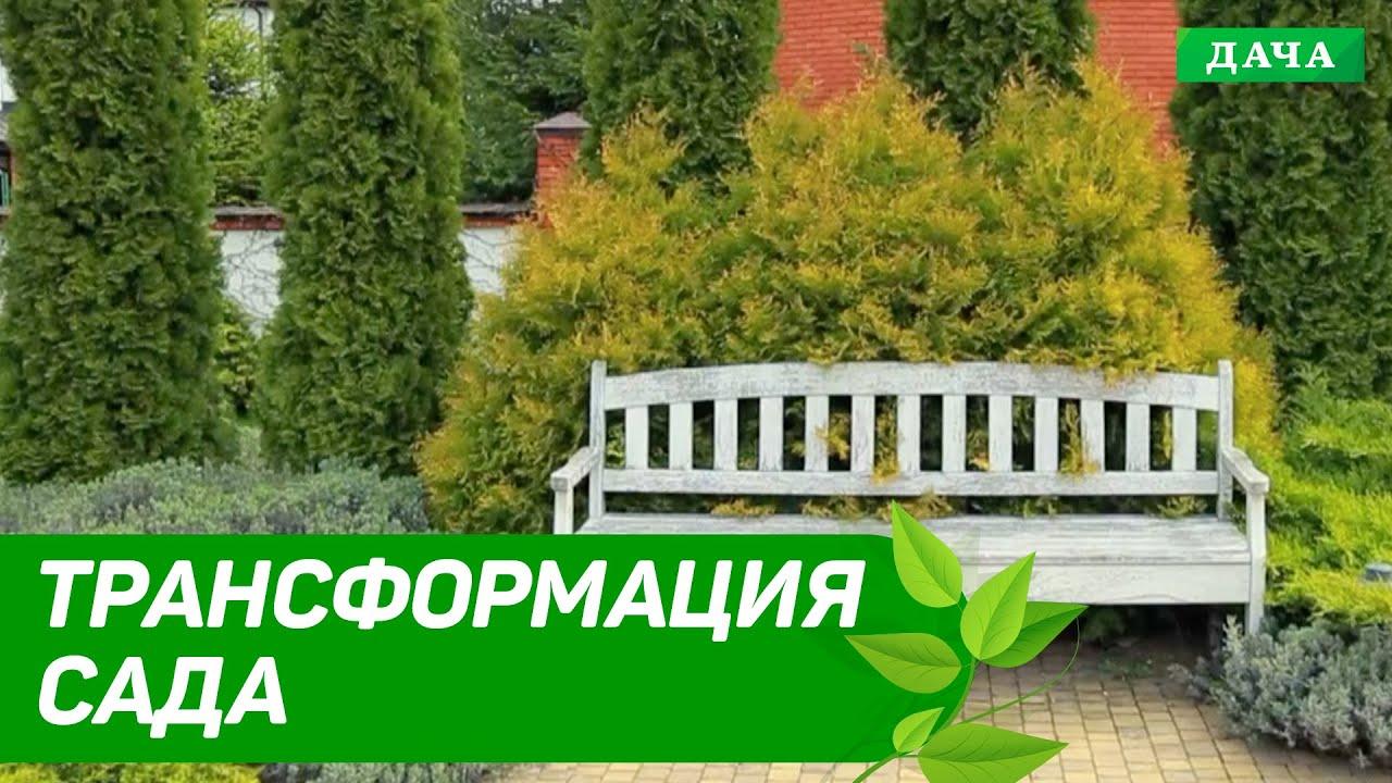 Ландшафтный дизайн | Трансформация Сада | Как трансформировать сад