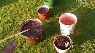 як зробити вино зі світлого винограду