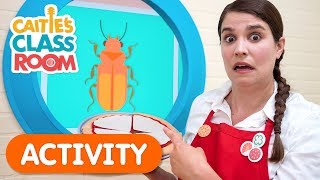 What Goes On A Pizza? | Caitie's Classroom | Activities For Kids