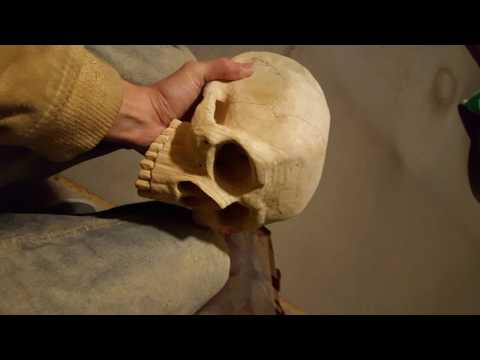 Carving a Skull