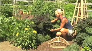Vegetable Gardening from White Flower Farm, Part 3