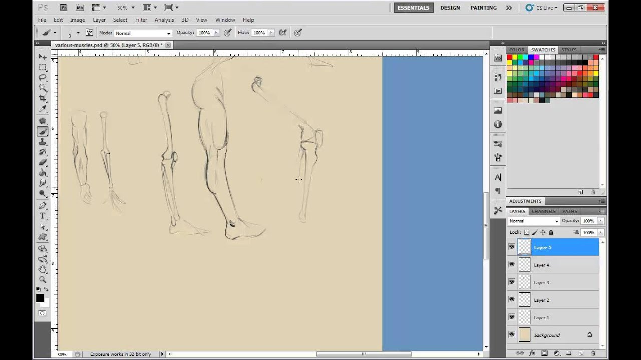 How to draw figures: 65 hour Anatomy Figure course to draw figures ...