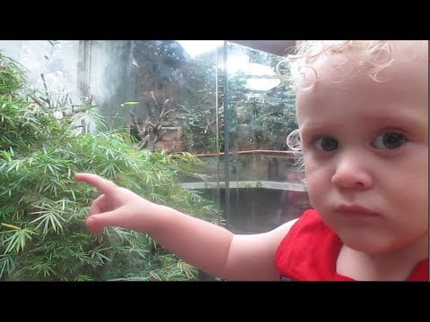 Omaha Henry Doorly Zoo Again!! (Day Trip) [102]