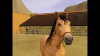 ~ Sims 3 ~ Spirit Stallion of the Cimarron ~ Part 3