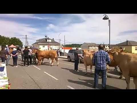 Desfile de carros do país en Paradela