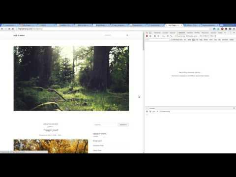 Loadgo in Wordpress using PACE