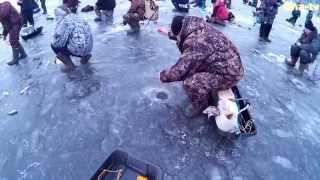Рибалка в Козьмодемьянске. р. Волга 19.12.2014 р. (Uha-tv)