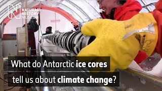 Studying ice cores in Antarctica | Natural History Museum