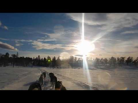 Video miniatyrbilde av Norway Husky Adventure av Denise van Vilsteren
