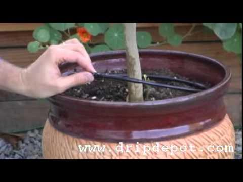 Drip Irrigation Tree Ring