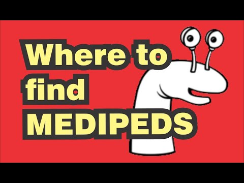 Where to find MEDIPEDS Extra Wide Crew Socks (white)