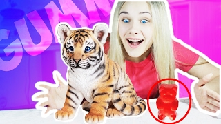 Я СЪЕЛА ТИГРА! Обычная Еда против Мармелада Челлендж! Real Food vs Gummy Food!
