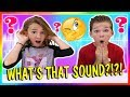 WHAT'S THAT SOUND CHALLENGE? | We Are The Davises