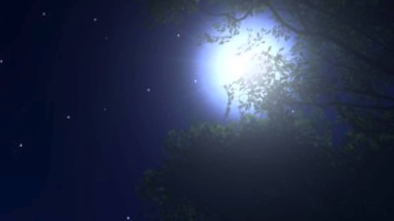 """Good Night, Love"" by Elaine Hagenberg"