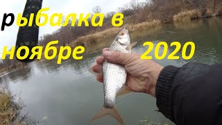 Рыбалка на реке на поплавок в ноябре отчет за 8 ноября