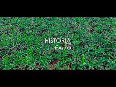 Historia De Exito Machala Prod. Ronny Ordoñez