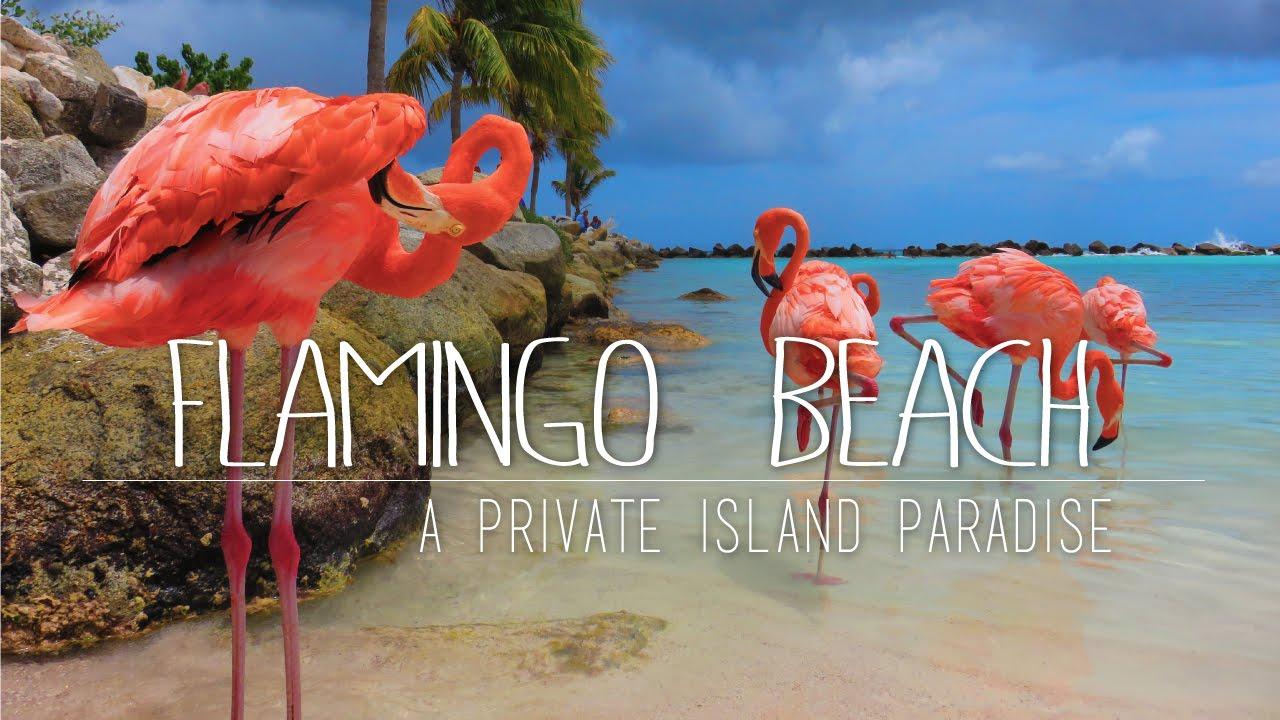 Renaissance Aruba Resort amp Casino  Marriott International