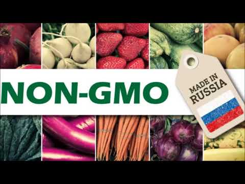 Russia Set To Become Leading Organic Food Exporter