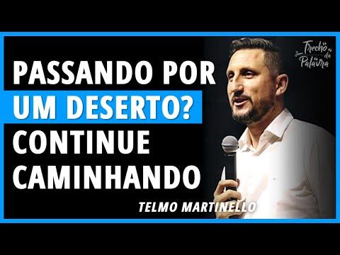 Telmo Martinello - DESFRUTE O CAMINHO NO DESERTO | Trecho Da Palavra