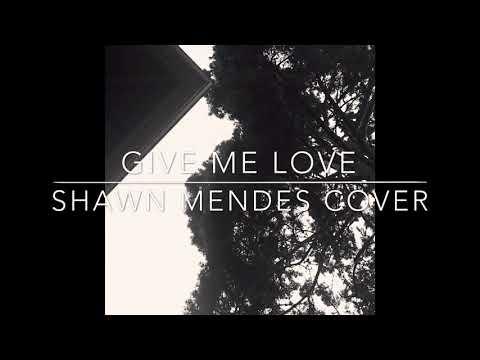 Shawn Mendes - Give Me Love Cover | Lyrics