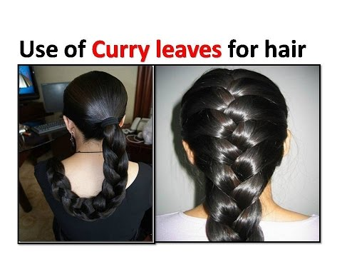 Home Remedies For Hair Growth and Thickness – Coconut Oil, Amla & Curry