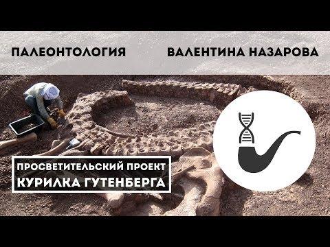 Палеонтология – Валентина Назарова