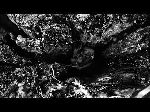 Kevin Witt - Anaus mp3 zene letöltés