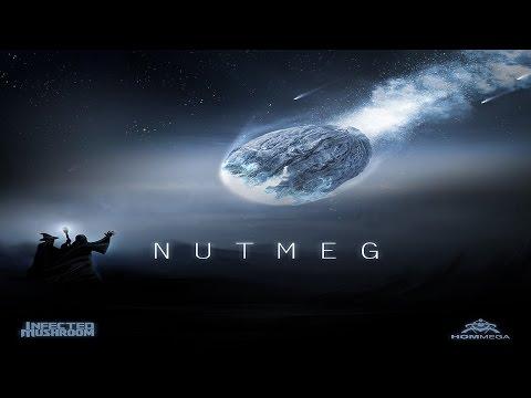 Infected Mushroom - Nutmeg ᴴᴰ