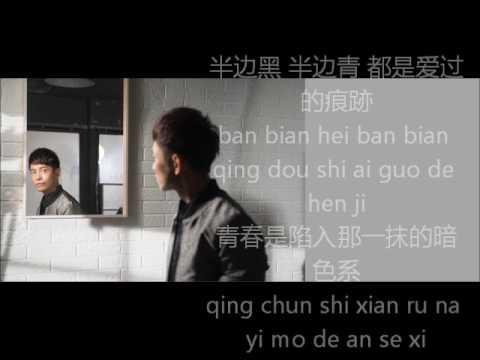 张智成—瘀青(歌词附拼音)z-chen-yu qing(lyrics)
