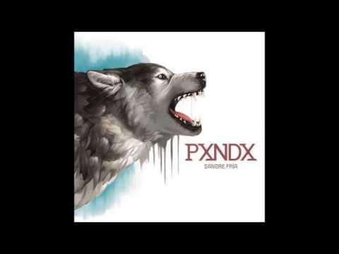 Download Pxndx-Lunar de clavícula (Sangre fria)
