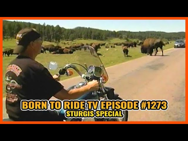 FULL SHOW Born To Ride TV Episode #1273 - Sturgis Special