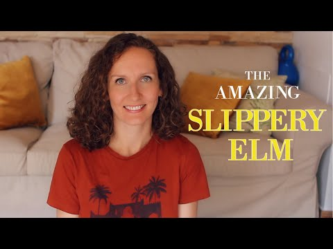 slippery-elm-bark:-how-to-use-it-for-healthy-digestion,-beautiful-skin,-and-more!